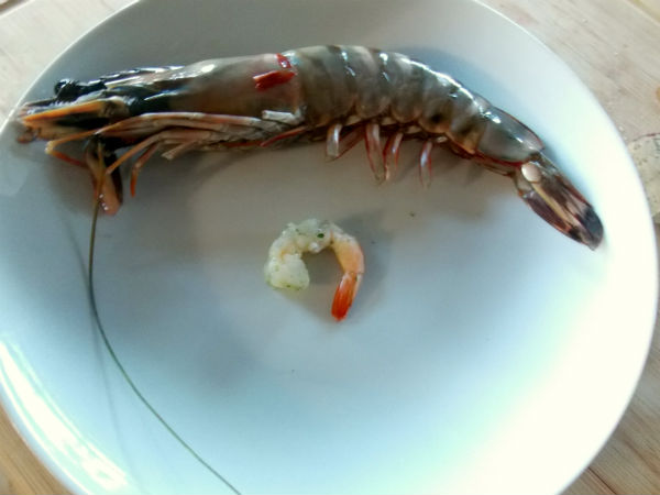 Prawn and Shrimp