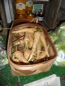 Locally grown Virginia Parsnips