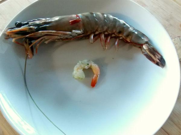 Prawn and Shrimp