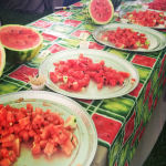 watermelon tasting picture