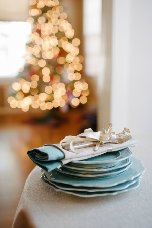 Holiday Perfection by Sera Petras Photography and My Clean Kitchen